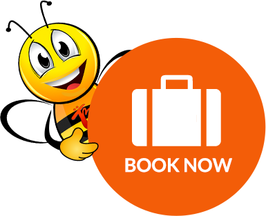 Travelbee Book Now